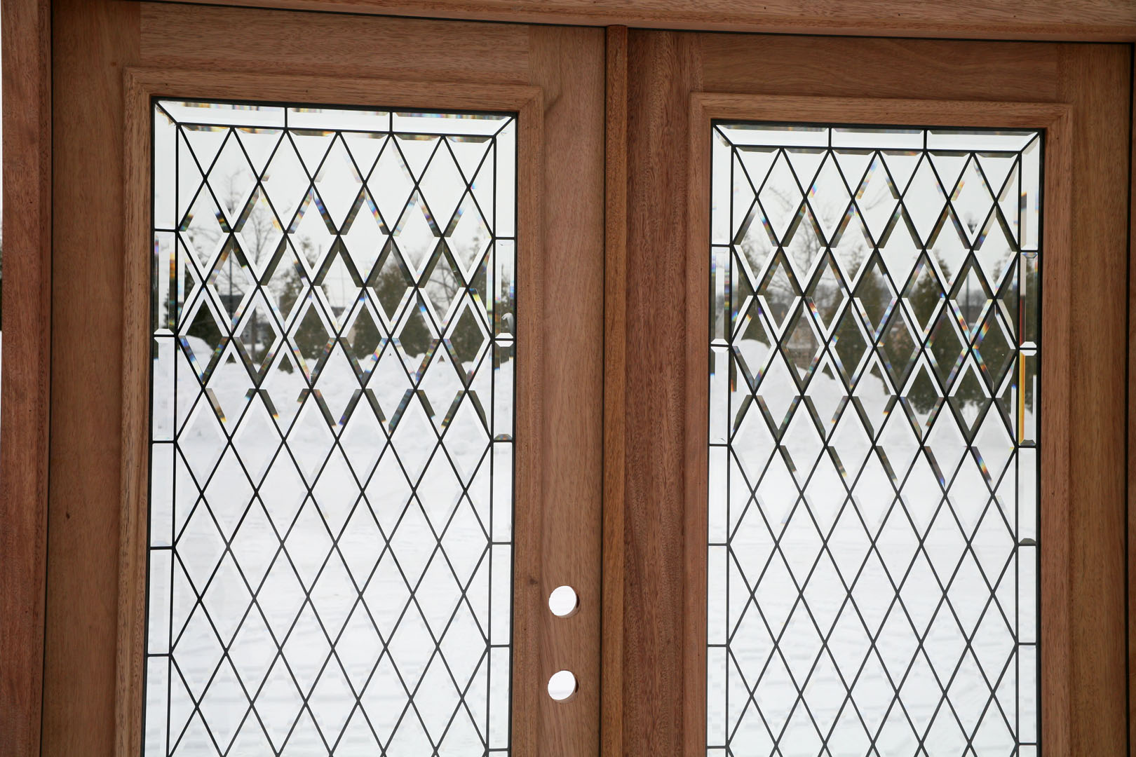 Exterior double doors full lite double doors for Exterior back doors with glass