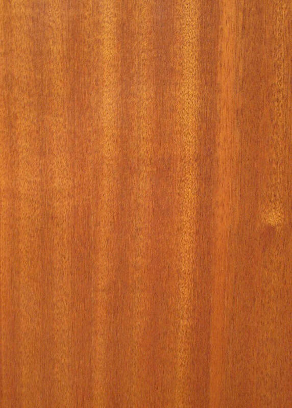 Sapele mahogany wood sample