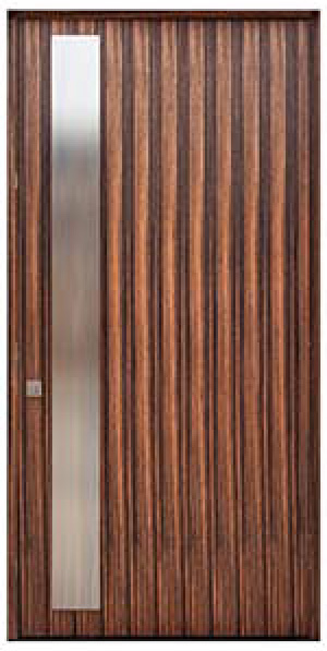 Modern entry door in ebony